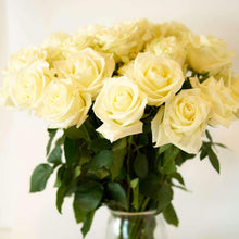 Load image into Gallery viewer, White Pure Long Stem Roses