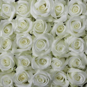 White Sympathy Bouquet