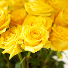 Load image into Gallery viewer, Yellow Bright Long Stem Roses