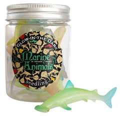 Glow-in-the-Dark Marine Animals