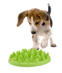 Green Mini - Interactive Feeder for Small Dogs & Puppies
