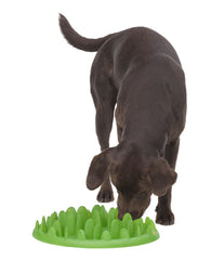 Green - Interactive Feeder for Dogs