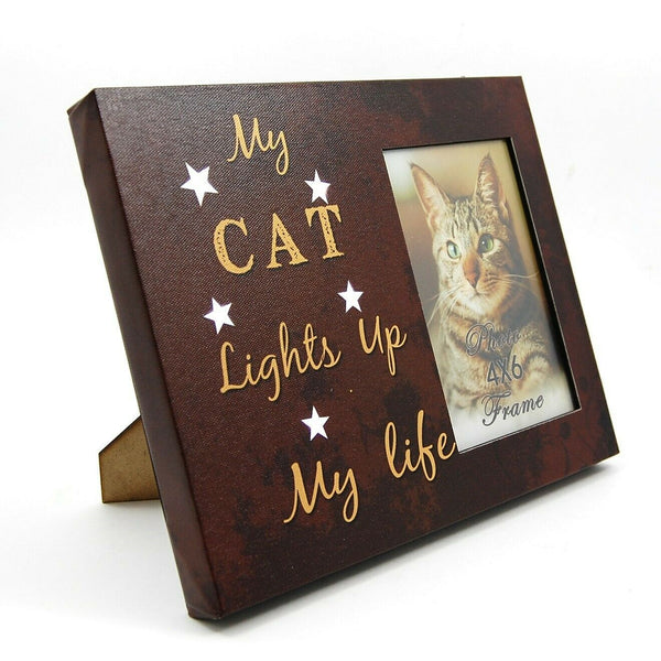 "Cat Photo Frame 4"" x 6"" LED Light Up Lighted Canvas Wall or Tabletop Picture Art"