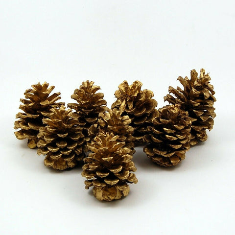 8 Natural Real Pine Cone Gold Painted Lot