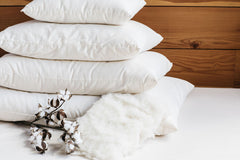 Certified Organic Wool Bed Pillows