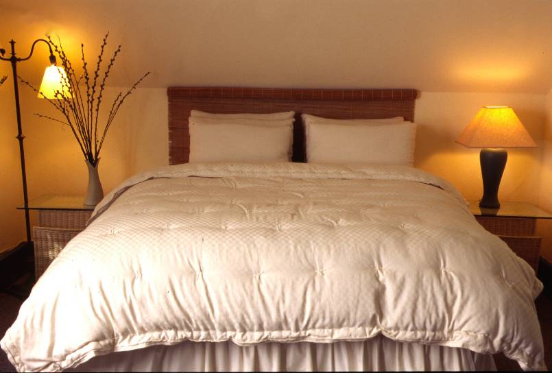 Dual-Weight Comforter - Holy Lamb Organics