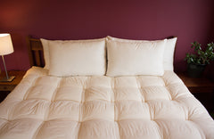 Certified Organic Wool Bed Pillows - Holy Lamb Organics