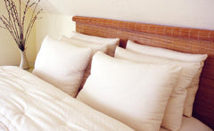 Wool-filled Bed Pillows - Holy Lamb Organics