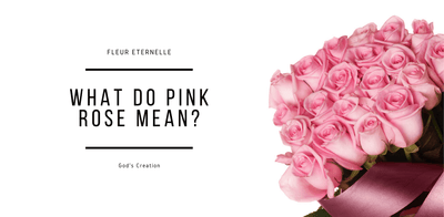 What do a pink rose mean ?