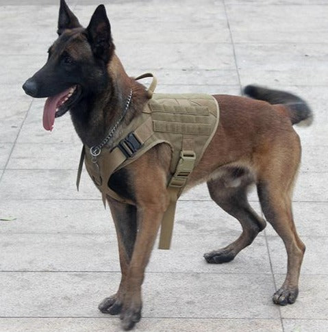 PetYuppy™ Tactical Harness