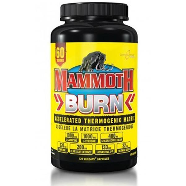 Mammoth Supplements - InterActive Nutrition Mammoth Burn 60 Servings - Supplements.co.nz
