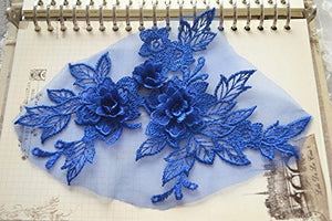 Mirror Pair Lace Applique Embroidery 3D Flower Lace Patches Motif Blossom Embellishment for Craft Projects Lyrical Dance Dress