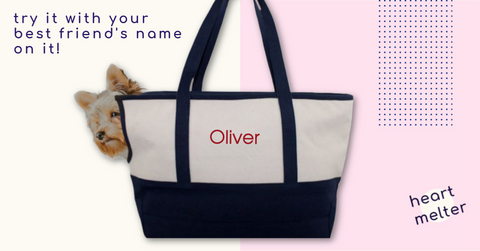 Personalized Pet Tote Carrier - Heart Melter - Personalized Gifts