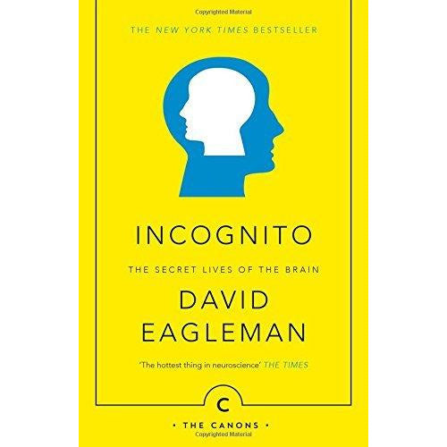 David Eagleman Collection 3 Books Bundle Set (Sum: Tales from the Afterlives, Incognito: The Secret Lives of The Brain, The Brain: The Story of You) - The Book Bundle