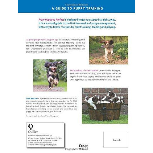From Puppy to Perfect: A proven, practical guide to training and caring for your new puppy - The Book Bundle