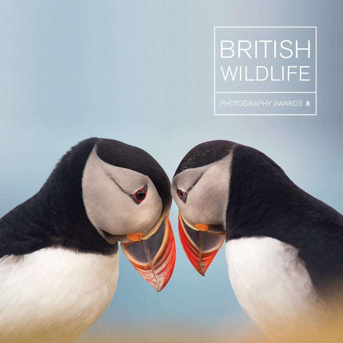 British Wildlife Photography Awards 8 - The Book Bundle