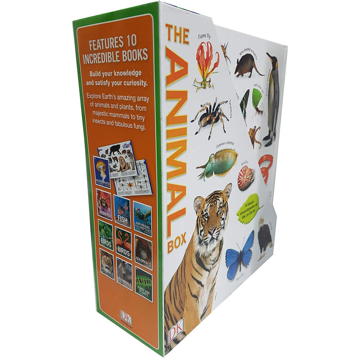 The Animal Box Collection 10 Books Set - The Book Bundle