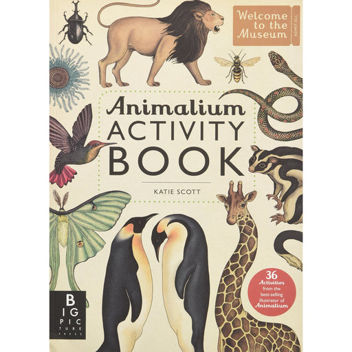 Animalium Activity Book (Welcome To The Museum) - The Book Bundle