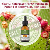 Prickly Pear Seed Oil (Barbary Fig Oil) 100% Pure - Cold Pressed/Best Natural Anti Aging Treatment - 1 Oz /30 Ml