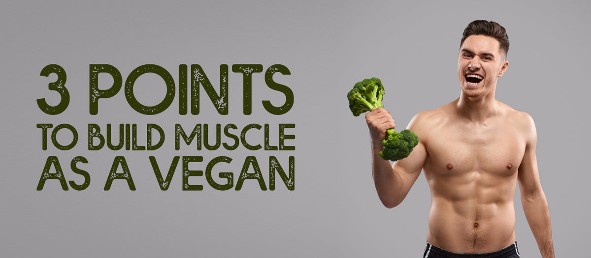 3 Points To Build Muscle As A Vegan