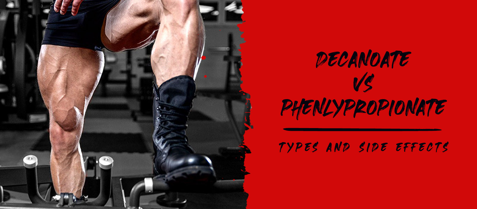 Decanoate vs Phenlypropionate: Types And Side Effects