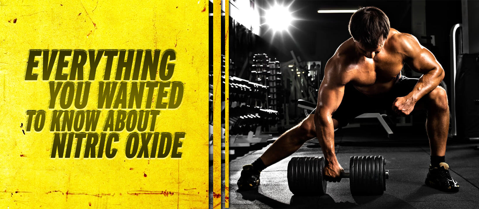 Everything You Wanted To Know About Nitric Oxide