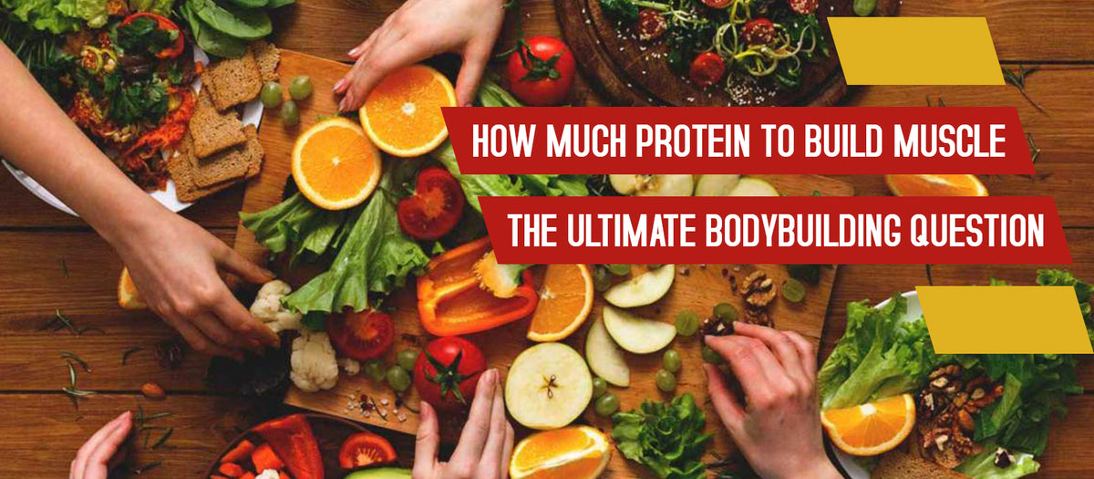 How Much Protein To Build Muscle The Ultimate Bodybuilding Question