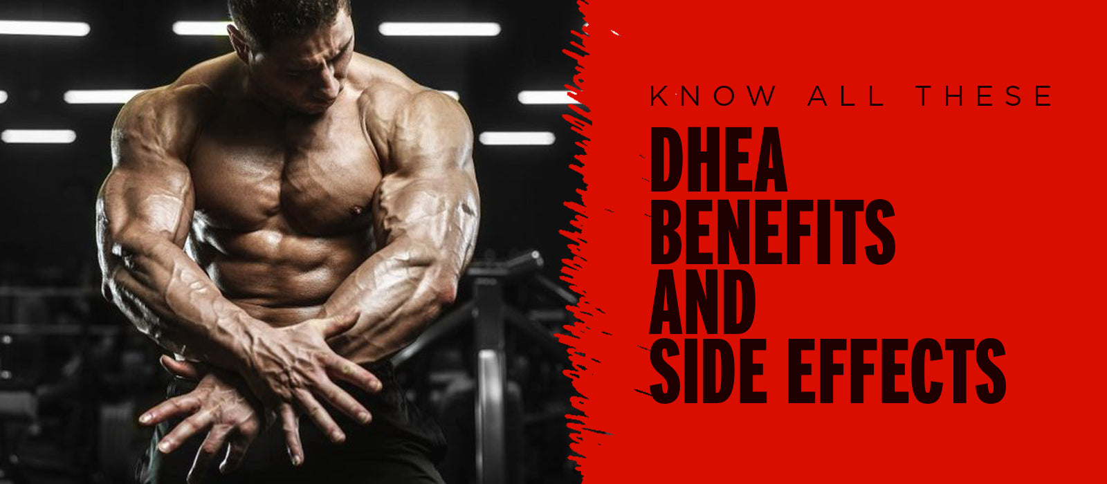 Know All These DHEA Benefits And Side Effects