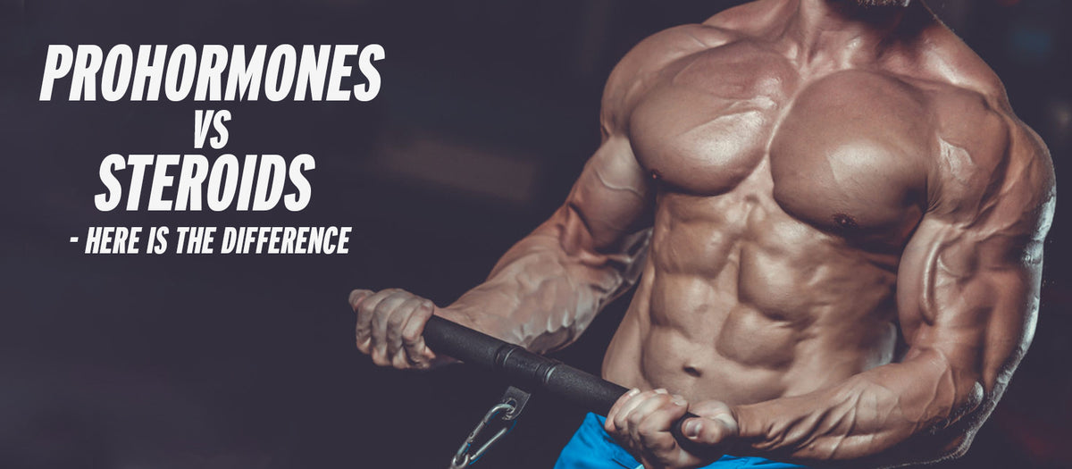 Prohormones Vs Steroids - Here Is The Difference