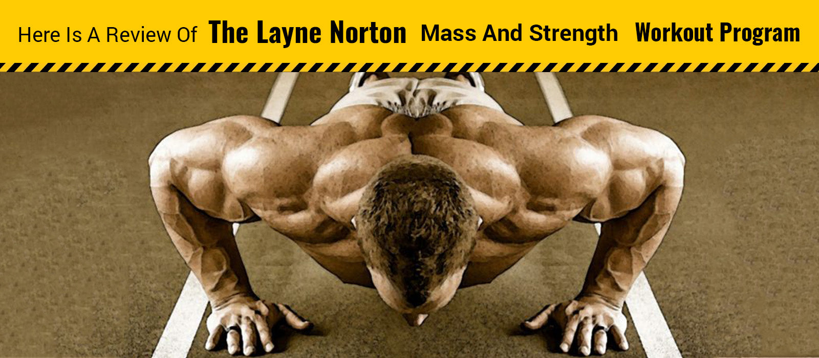 Here Is A Review Of The Layne Norton Mass And Strength Workout Program
