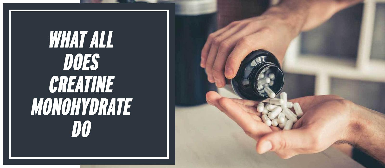 What All Does Creatine Monohydrate Do