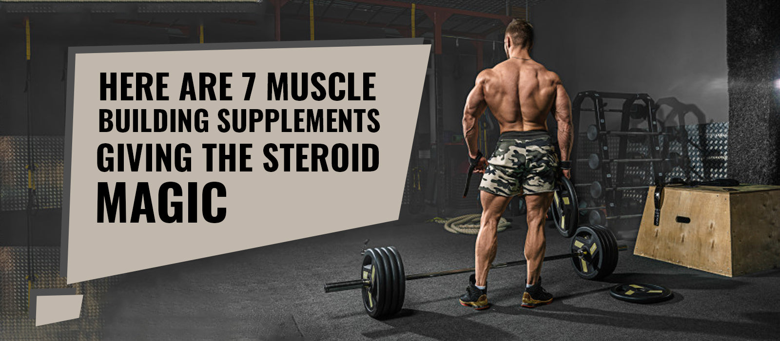 Here Are 7 Muscle Building Supplements Giving The Steroid Magic