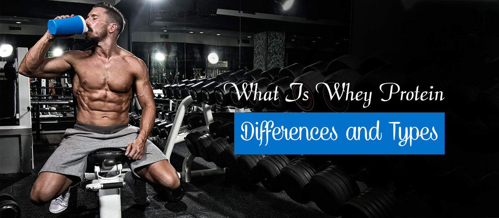 What Is Whey Protein - Differences and Types