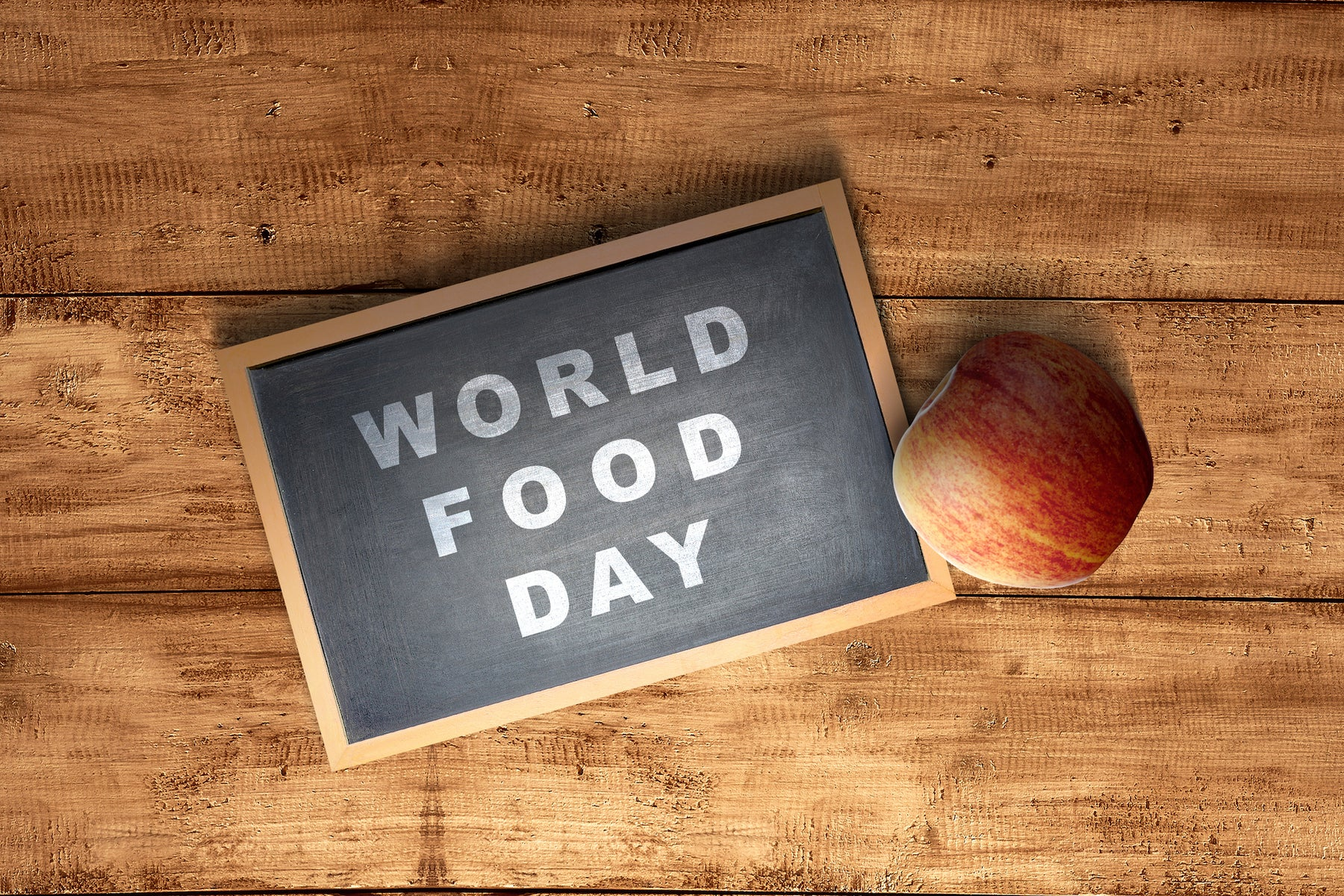 World Food Day 2020 Activities and Ideas