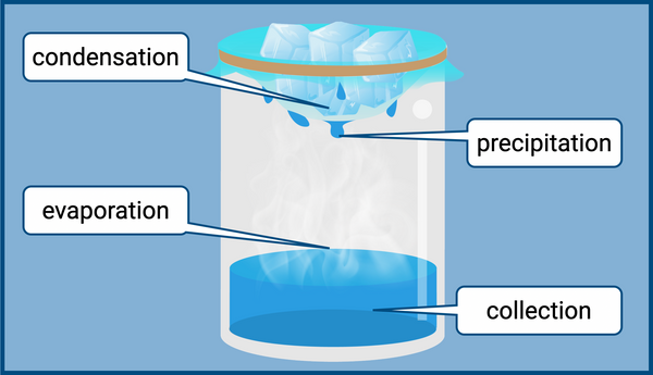 Try creating a mini model of the water cycle.