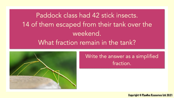 Question 1: Fractions