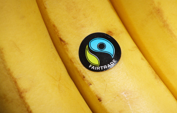A Fairtrade label on a bunch of bananas