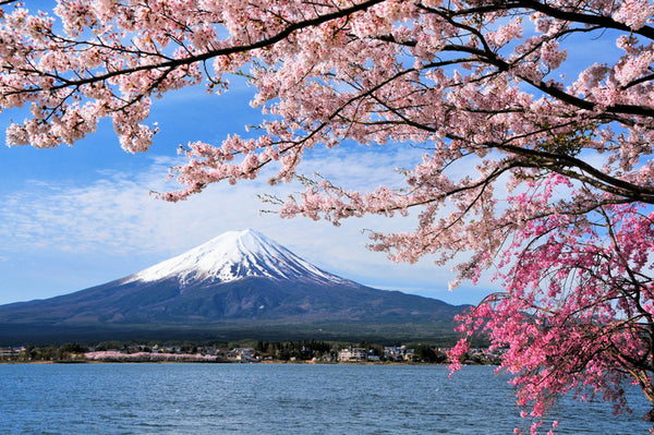 Facts about Volcanoes - Mount Fuji