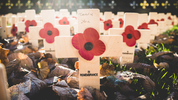 Field of Remembrance Day Crosses and Poppies