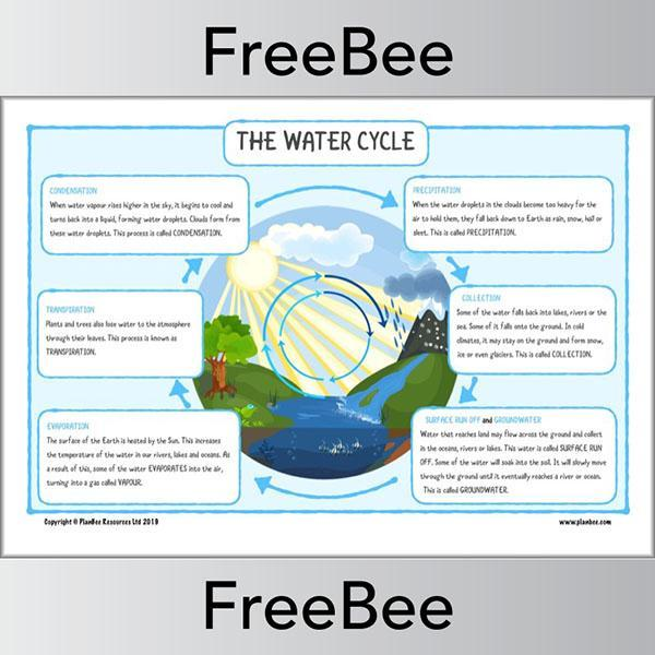 Check out our Water Cycle Diagram Freebee here!