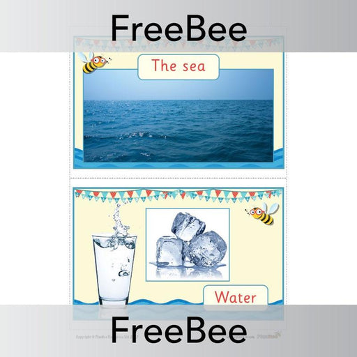 PlanBee FREE Seaside Materials Display  | PlanBee FreeBees