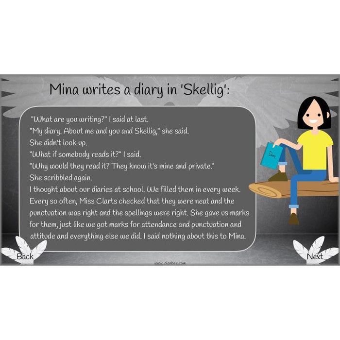 Skellig: All DIARY ENTRIES Lessons in Pack