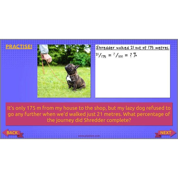 PlanBee Ratio, Percentages and Proportion: Year 6 Maths