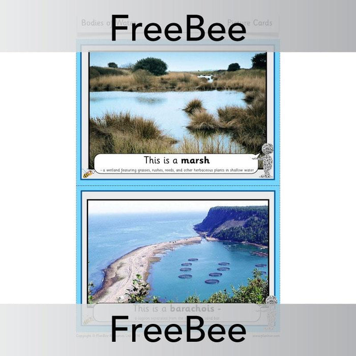 Bodies of Water Picture Cards