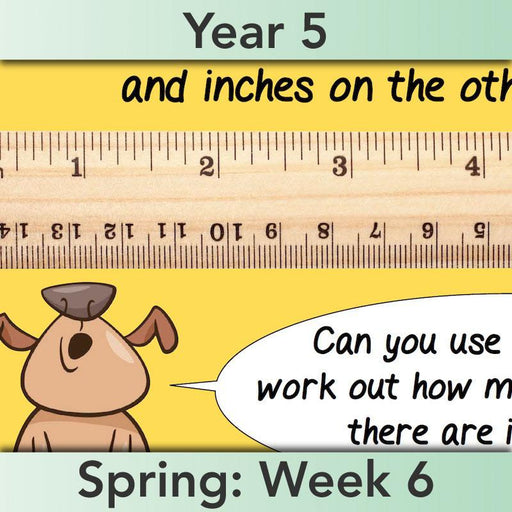 PlanBee Converting Measures - Complete Year 5 Measurement Planning