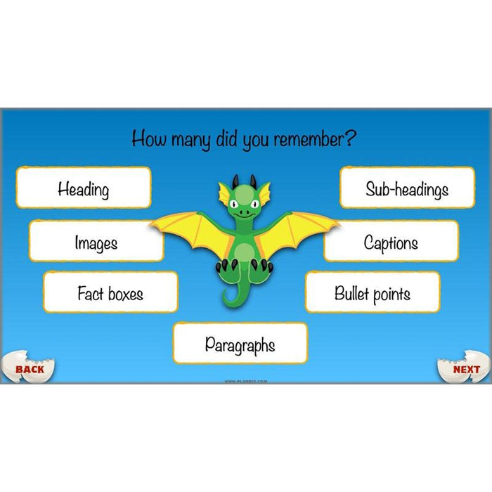 PlanBee Dragons KS2 | Non-chronological Reports Planning | Year 4