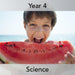 PlanBee Animals including Humans Year 4 | Eating and Digestion Lessons