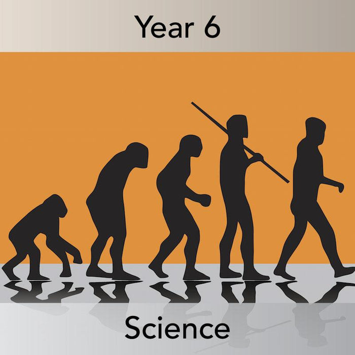 PlanBee Evolution and Inheritance Year 6 | KS2 Science Lesson Planning
