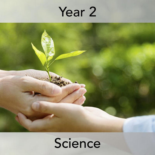 PlanBee Growing Plants KS1 - Year 2 Plants Planning Science for KS1