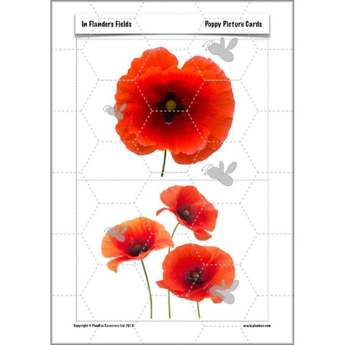 ww1-art-ideas-ks2-56